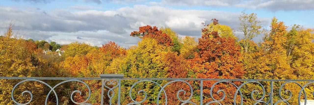 saint-germain-en-laye park in autumn or fall
