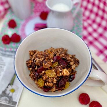 bowl of homemade chocolate coconut granola breakfast