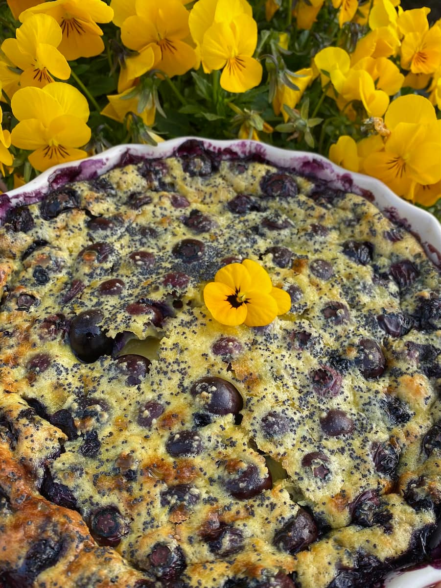 blueberry lemon clafoutis dessert